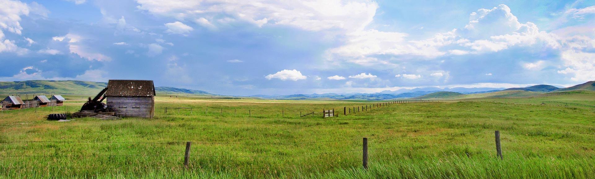 Prärielandschaft in Alberta, Kanada.