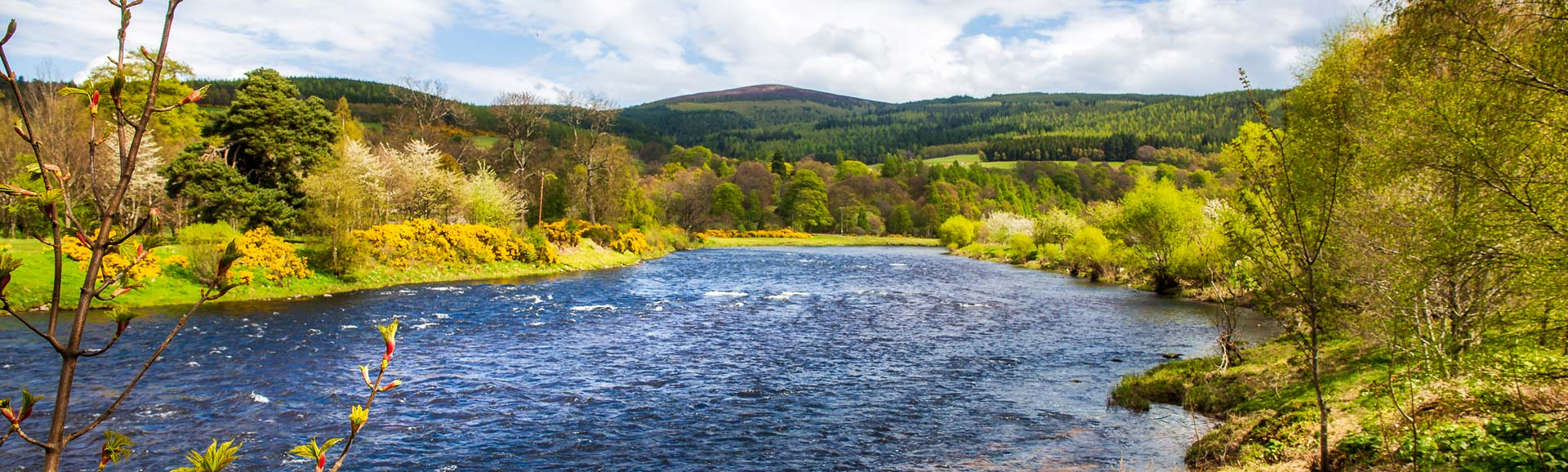 Der Fluss Spey in der Nähe des Dorfes Rothes, Schottland.