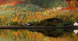 Whsikywelt - Top 10 Whisksy-Empfehlungen für den Herbst.